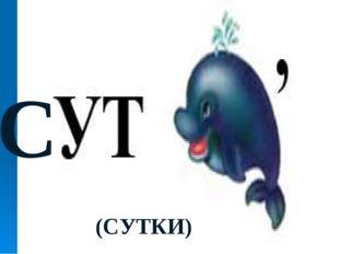 С (СУТКИ)