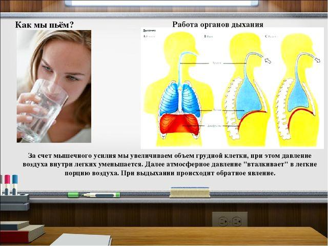 Как мы пьём? Работа органов дыхания За счет мышечного усилия мы увеличиваем о...