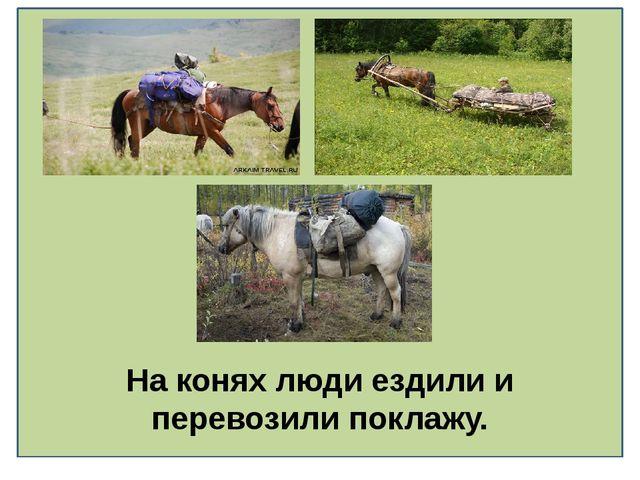 На конях люди ездили и перевозили поклажу.