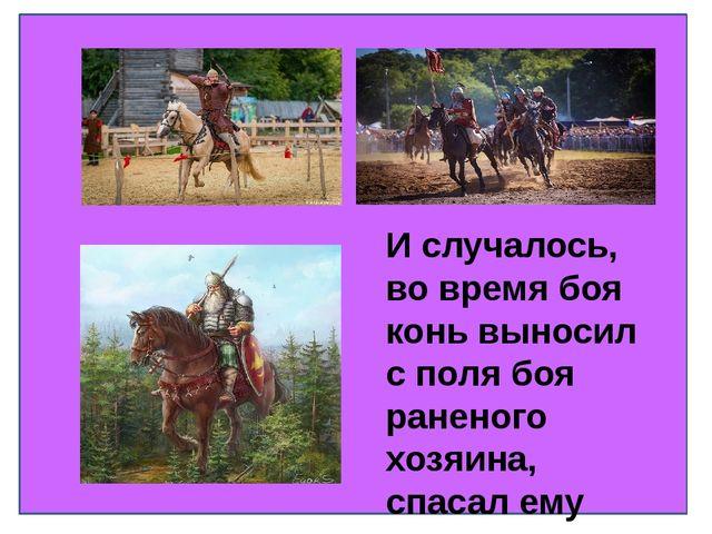 И случалось, во время боя конь выносил с поля боя раненого хозяина, спасал е...