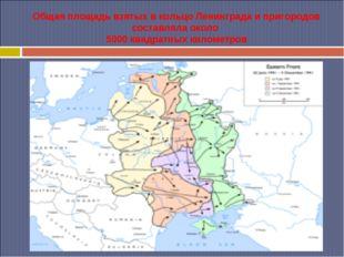 Общая площадь взятых в кольцо Ленинграда и пригородов составляла около 5000