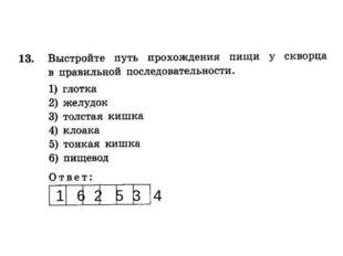 1 6 2 5 3 4