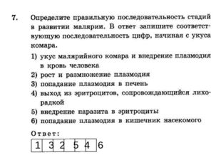 1 3 2 5 4 6