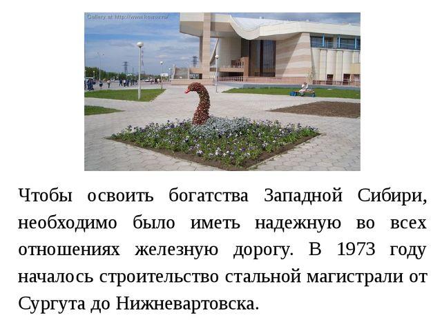 Чтобы освоить богатства Западной Сибири, необходимо было иметь надежную во вс...