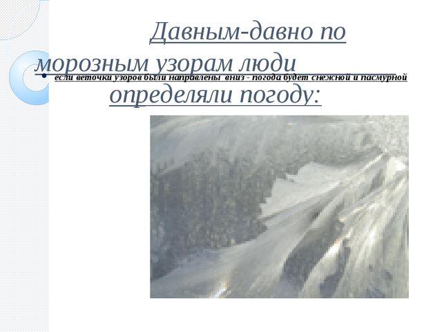 Давным-давно по морозным узорам люди определяли погоду: если веточки узоров...