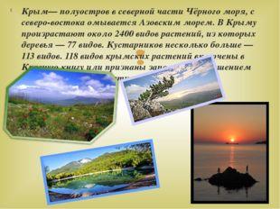 Крым— полуостров в северной части Чёрного моря, с северо-востока омывается Аз