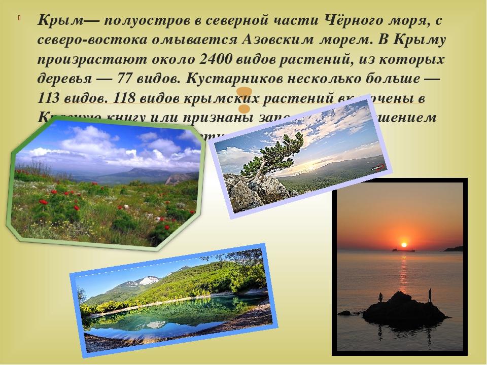 Крым— полуостров в северной части Чёрного моря, с северо-востока омывается Аз...