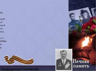 Анисимов Николай Павлович Родился 25.04.1923 года. Принимал участие в Сталинг