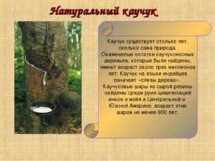 Натуральный каучук Каучук существует столько лет, сколько сама природа. Окаме