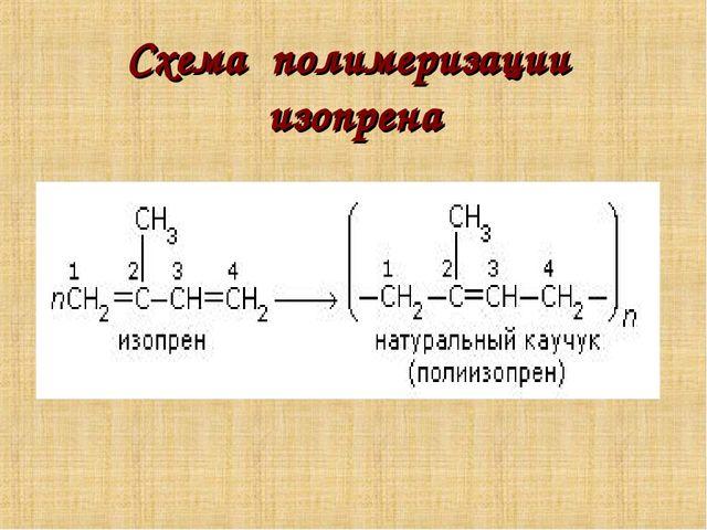 Схема полимеризации изопрена