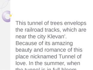 This tunnel of trees envelops the railroad tracks, which are near the city K
