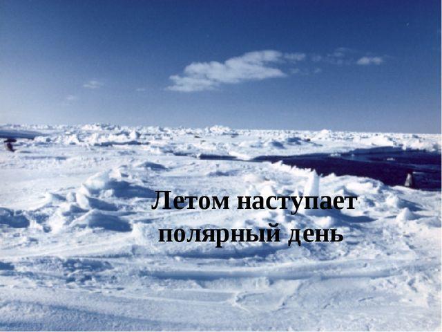 Летом наступает полярный день