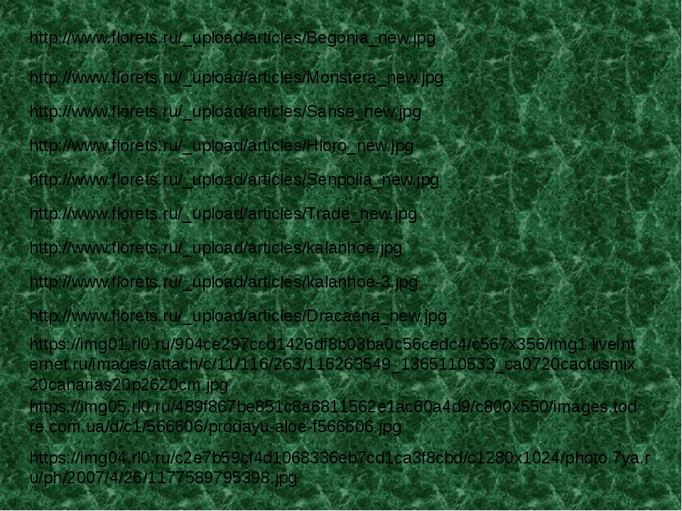 http://www.florets.ru/_upload/articles/Begonia_new.jpg http://www.florets.ru/...