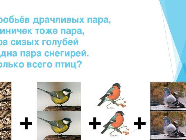 Воробьёв драчливых пара, И синичек тоже пара, Пара сизых голубей И одна пара...