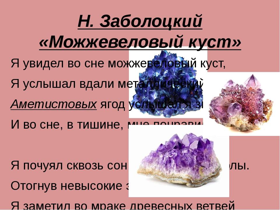 Н. Заболоцкий «Можжевеловый куст» Я увидел во сне можжевеловый куст, Я услыша...