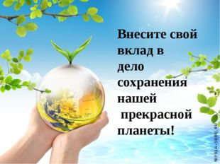 Внесите свой вклад в дело сохранения нашей прекрасной планеты!