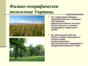 Физико-географическое положение Украины. На территории Украины  сформировали