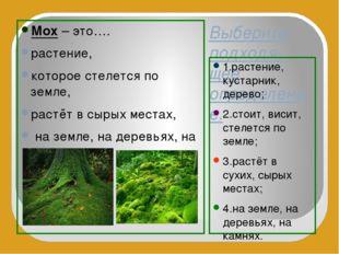 Выберите подходя-щее определение. 1.растение, кустарник, дерево; 2.стоит, вис