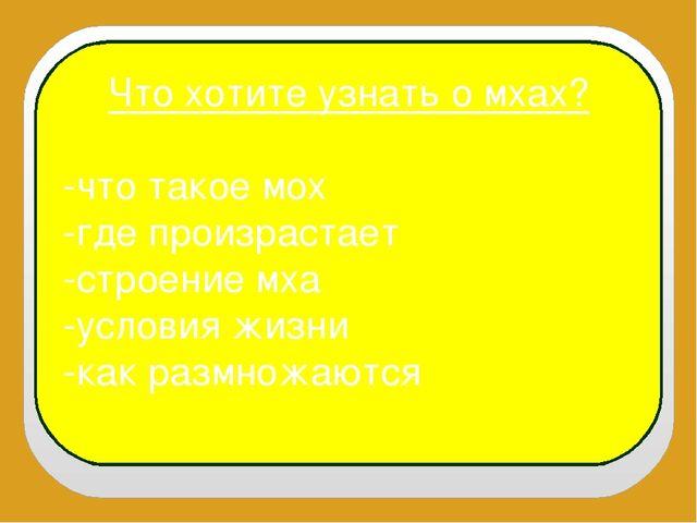 Что хотите узнать о мхах? -что такое мох -где произрастает -строение мха -усл...