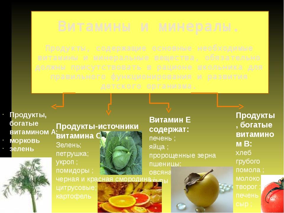 Витамины и минералы. Продукты, содержащие основные необходимые витамины и ми...