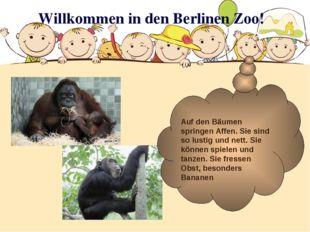 Willkommen in den Berlinen Zoo! Auf den Bäumen springen Affen. Sie sind so lu
