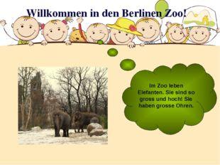 Willkommen in den Berlinen Zoo! Im Zoo leben Elefanten. Sie sind so gross und