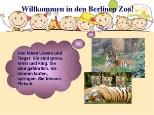 Willkommen in den Berlinen Zoo! Hier leben Löwen und Tieger. Sie sind gross,