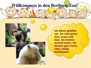 Willkommen in den Berlinen Zoo! Die Bären gefallen mir. Sie sind gross, dick,