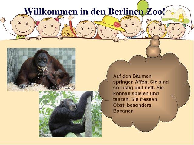 Willkommen in den Berlinen Zoo! Auf den Bäumen springen Affen. Sie sind so lu...