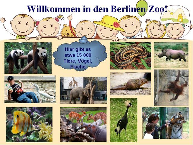 Willkommen in den Berlinen Zoo! Hier gibt es etwa 15 000 Tiere, Vögel, Fische