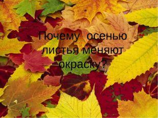 Почему осенью листья меняют окраску?