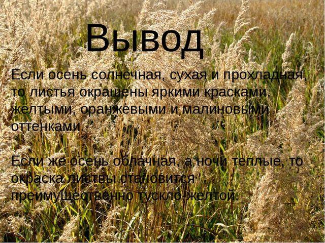 Вывод Если осень солнечная, сухая и прохладная, то листья окрашены яркими кр...