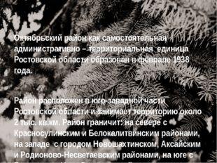 Октябрьский район как самостоятельная административно – территориальная едини