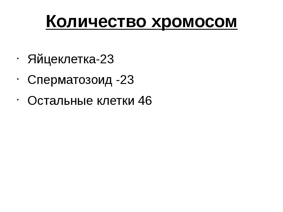 Количество хромосом Яйцеклетка-23 Сперматозоид -23 Остальные клетки 46