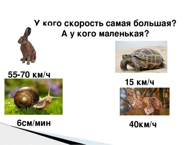 У кого скорость самая большая? А у кого маленькая? 55-70 км/ч 6см/мин 15 км/ч...