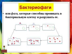 Бактериофаги или фаги, которые способны проникать в бактериальную клетку и ра