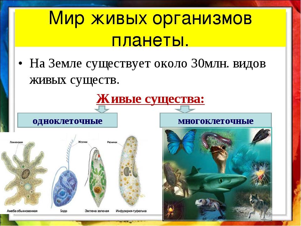 Мир живых организмов планеты. На Земле существует около 30млн. видов живых су...