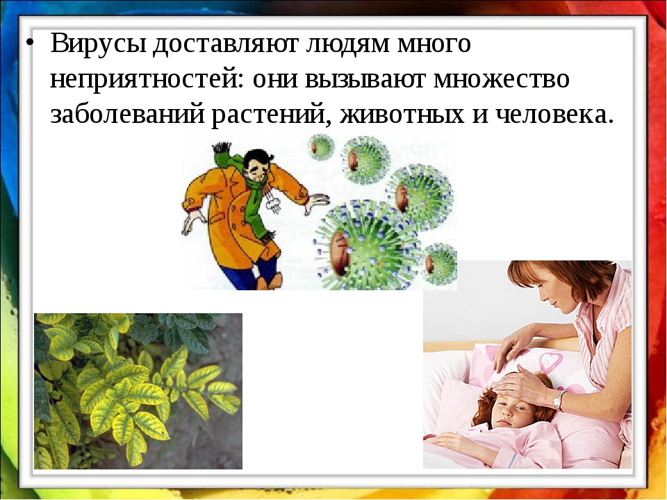 Вирусы доставляют людям много неприятностей: они вызывают множество заболеван...