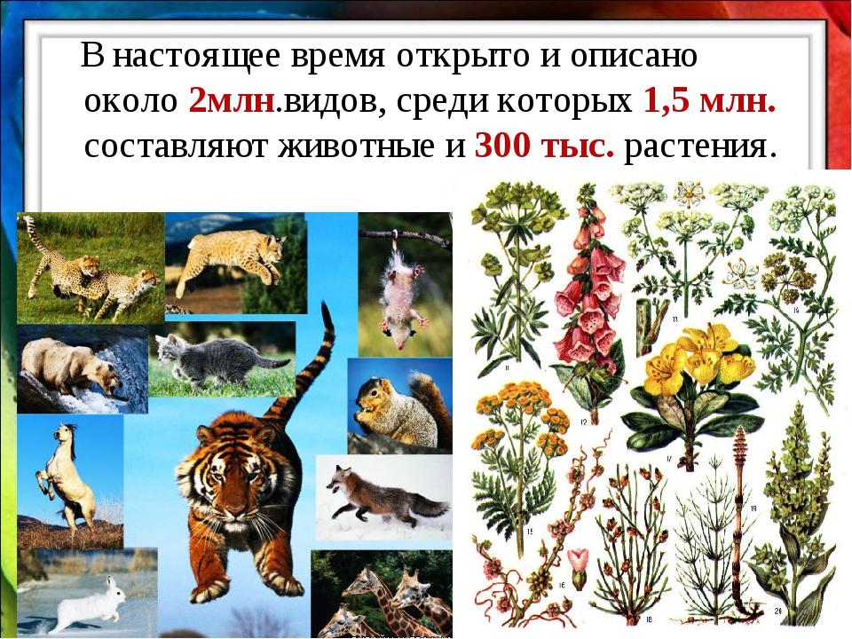 В настоящее время открыто и описано около 2млн.видов, среди которых 1,5 млн....