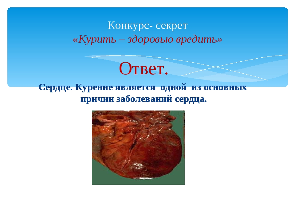 Ответ. Сердце. Курение является одной из основных причин заболеваний сердца....