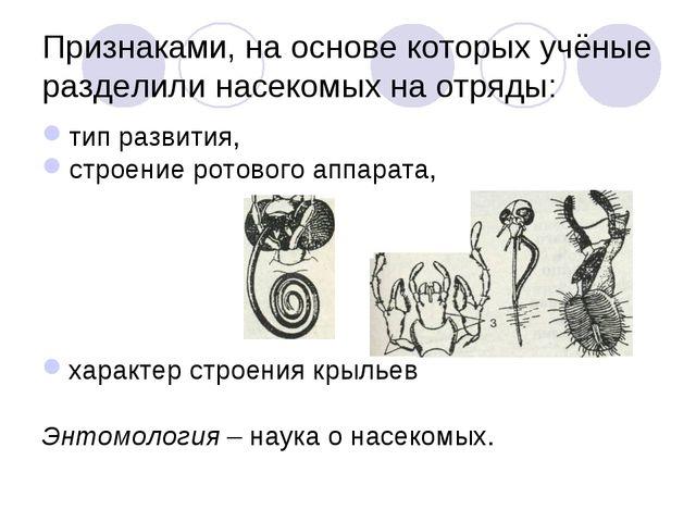 Признаками, на основе которых учёные разделили насекомых на отряды: тип разви...
