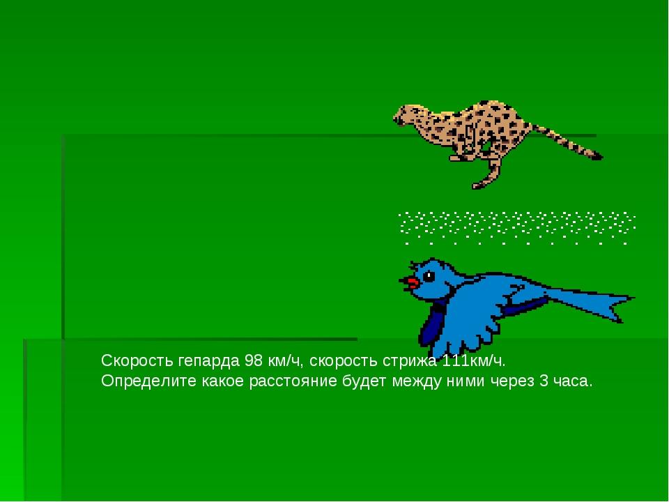 Скорость гепарда 98 км/ч, скорость стрижа 111км/ч. Определите какое расстояни...