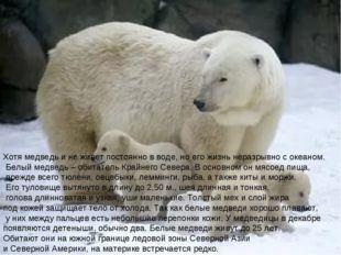 Хотя медведь и не живет постоянно в воде, но его жизнь неразрывно с океаном.