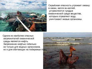 Одним из наиболее опасных загрязнителей океанической среды является нефть. За