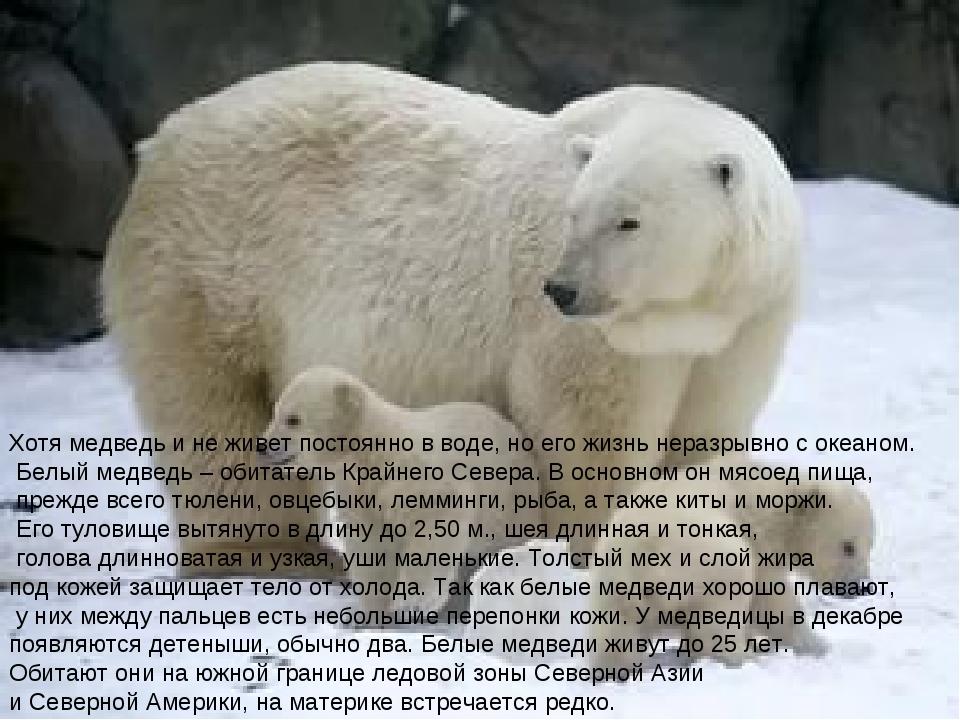 Хотя медведь и не живет постоянно в воде, но его жизнь неразрывно с океаном....