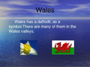 Wales Wales has a daffodil, as a symbol.There are many of them in the Wales v