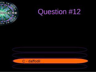 Question #12 B - rose A - thistle C - daffodil D - shamrock C - daffodil The