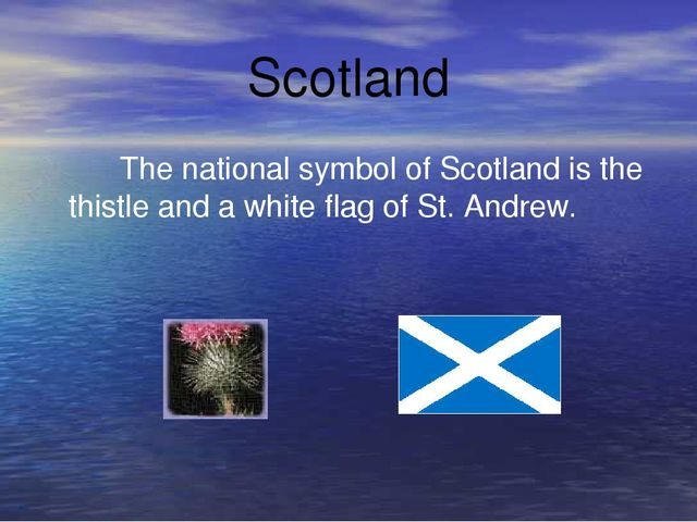 Scotland The national symbol of Scotland is the thistle and a white flag of S...