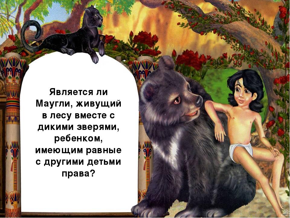 Является ли Маугли, живущий в лесу вместе с дикими зверями, ребенком, имеющим...