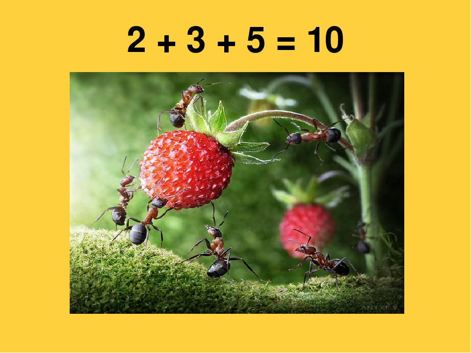 2 + 3 + 5 = 10